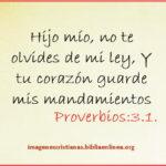 Imagen con Proverbios:3.1