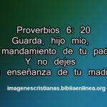 Imagen con frases de la Biblia de Proverbios 6:20