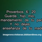 proverbios 6-20