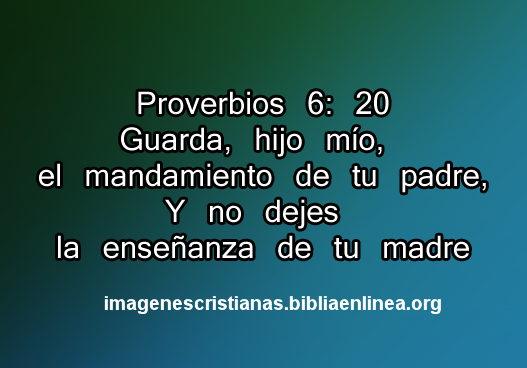 Versiculos De La Biblia Para Padres