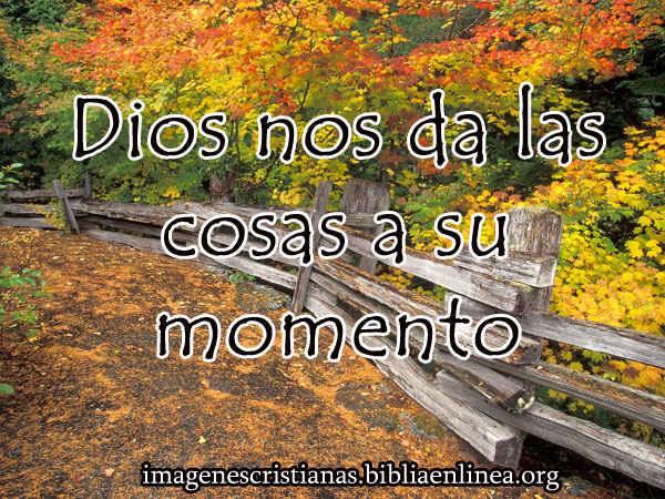 Dios nos da las cosas a su momento