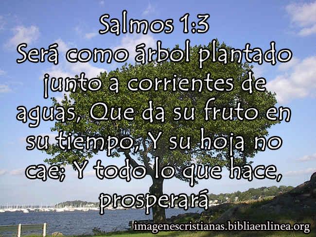 Salmos 1-3