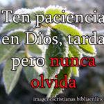 Ten paciencia en Dios, tarda pero nunca olvida