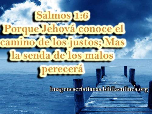 imagen con salmos 1-6