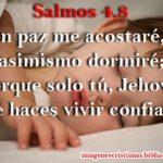 Imagen con Salmos 4:8 –  En paz me acostaré