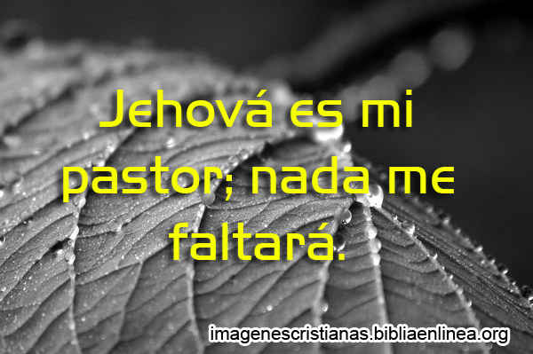 Jehova es mi pastor Nada me Faltara