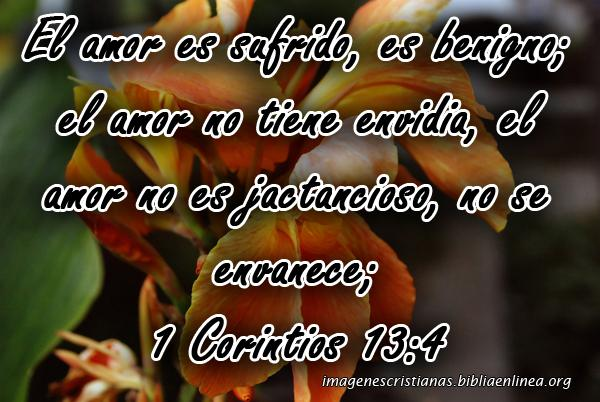 Imagenes Cristianas para el 14 de Febrero