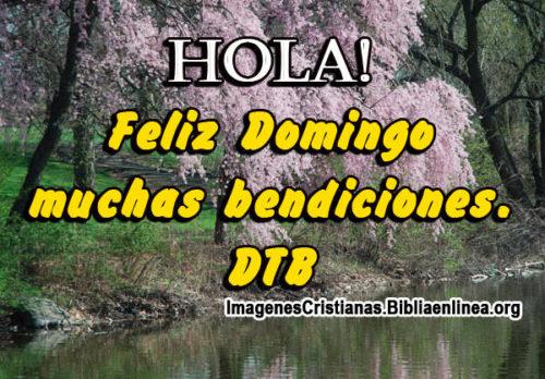 Hola! Feliz Domingo muchas bendiciones. DTB