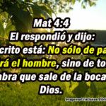 Frases de Jesús del Libro de Mateo del Capitulo 1 al 10