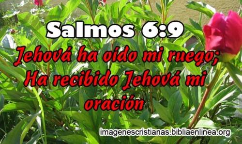 Imagenes Cristianas Nuevas (3)