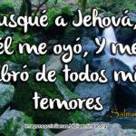 Salmos 34:4 Busqué a Jehová, y él me oyó, Y me libró de todos mis temores