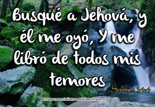Salmos 34-4 Busque a Jehova y el me oyo