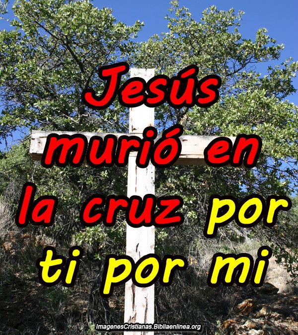 Jesus Fue Crusificado Imagenes