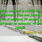Salmos 18.2. Jehová, roca mía y castillo mío