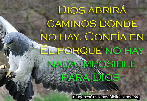 Descargar Imagenes Cristianas Lindas