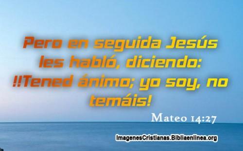 Palabras de Animo de Jesus