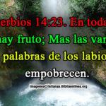 Proverbios 14:23. En toda labor hay fruto