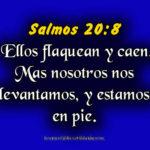 Imagenes de Salmos 20:8 Ellos flaquean y caen, Mas nosotros nos levantamos