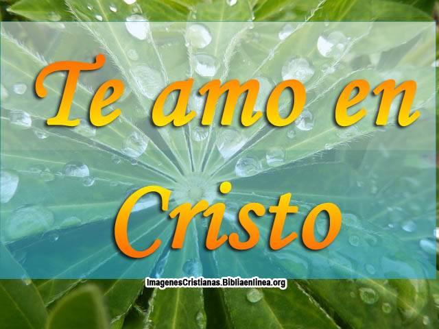 Te amo En Cristo