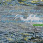 Proverbios 19:15 Y el alma negligente padecerá hambre