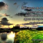 Salmos 23:2 Junto a aguas de reposo me pastoreará