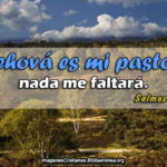Salmos de Confianza que nada nos hará falta