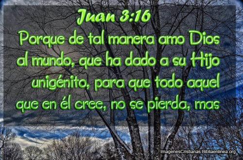 Juan 3-16 De tal Manera Amo Dios al Mundo