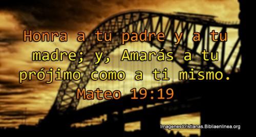 Mateo 19-19 Amar a los demas