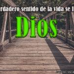 El sentido de la vida es Dios