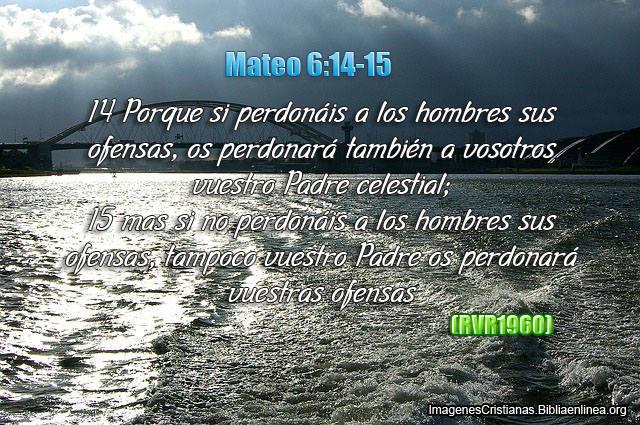 Imagenes con Frases de Perdonar