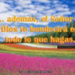 Imágenes y Pasajes de Dios te bendecirá en todo