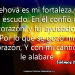 #Salmosdeldia 28:7 Jehová es mi fortaleza y mi escudo