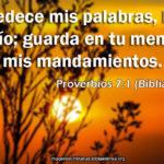 Proverbios del Dia Guardar los Mandamientos