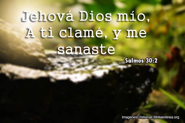 Salmos del Dia de Sanidad