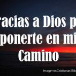 Gracias a Dios por ponerte en mi Camino