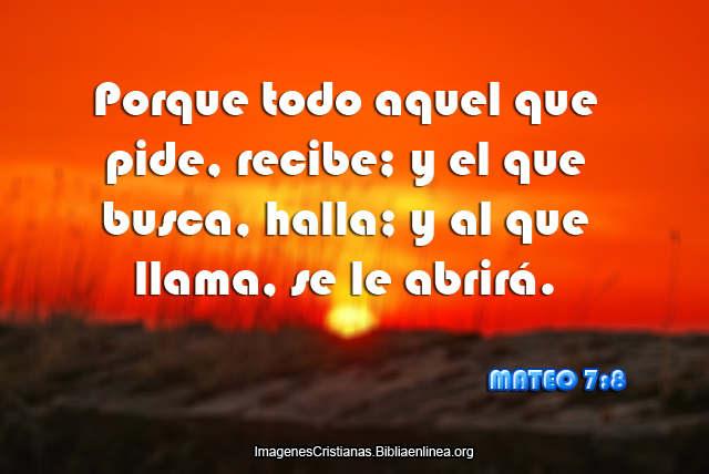 Mateo 7-8
