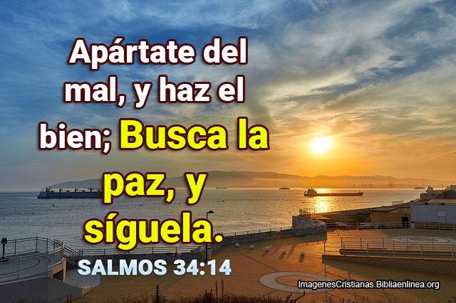 Salmos 34-14