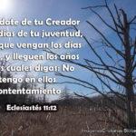 Consejos de la Biblia para Jovenes (con Imagenes)