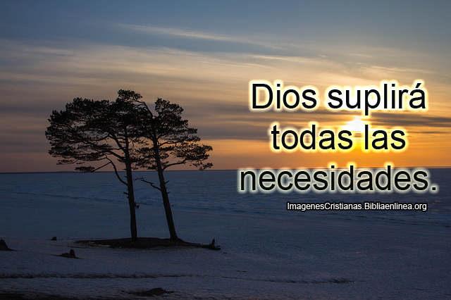 Dios suplira todas las necesidades