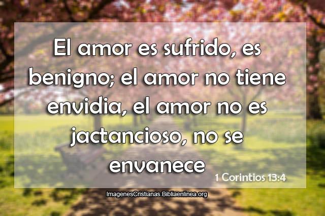 El amor es sufrido es benigno el amor no tiene envidia