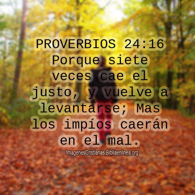 Proverbios 7 veces cae el justo