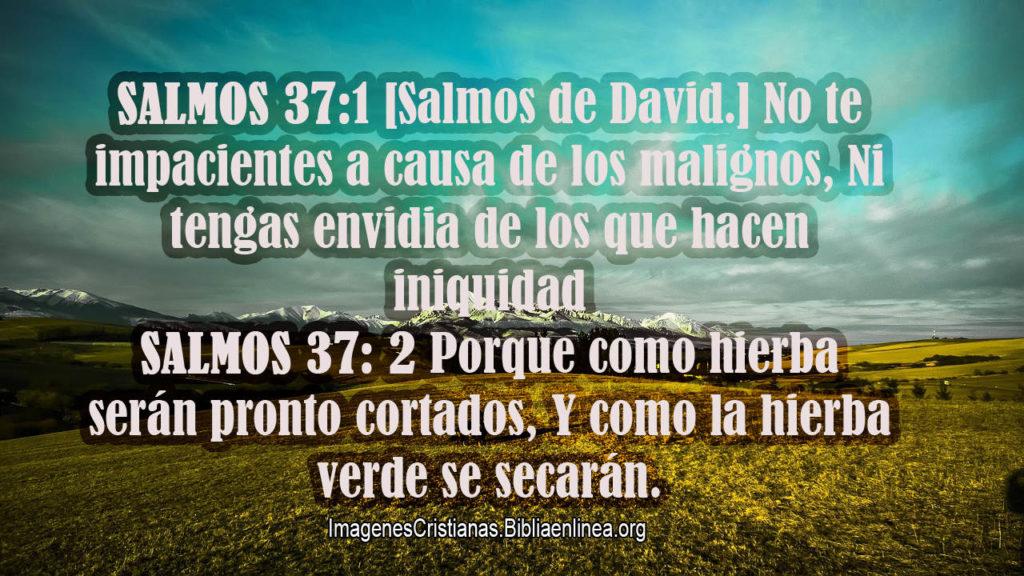 Salmos 37-1 No tener envidia