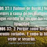 Salmos 37:1-2 Ni tengas envidia de los que hacen iniquidad
