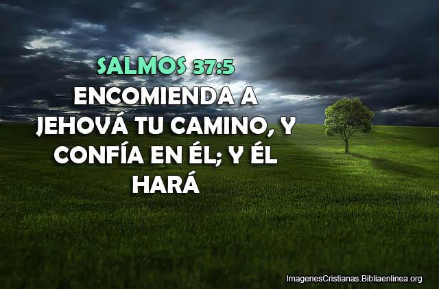 Salmos 37-5
