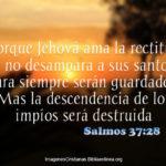 Salmos de la Semana 22: Porque Jehová ama la rectitud
