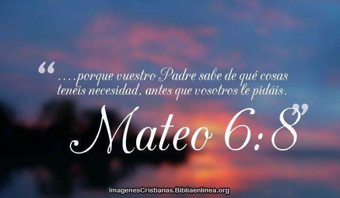 Mateo 6-8