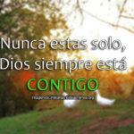 Nunca estas solo, Dios siempre está contigo