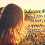 Salmos para esta Semana 23: Porque en ti, oh Jehová, he esperado
