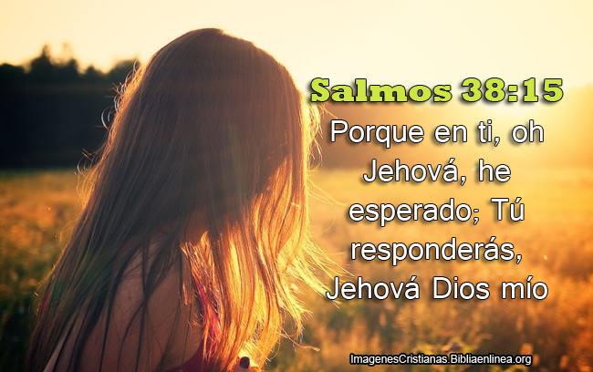 Salmos del dia