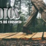 Oracion para Dios: Eres mi consuelo